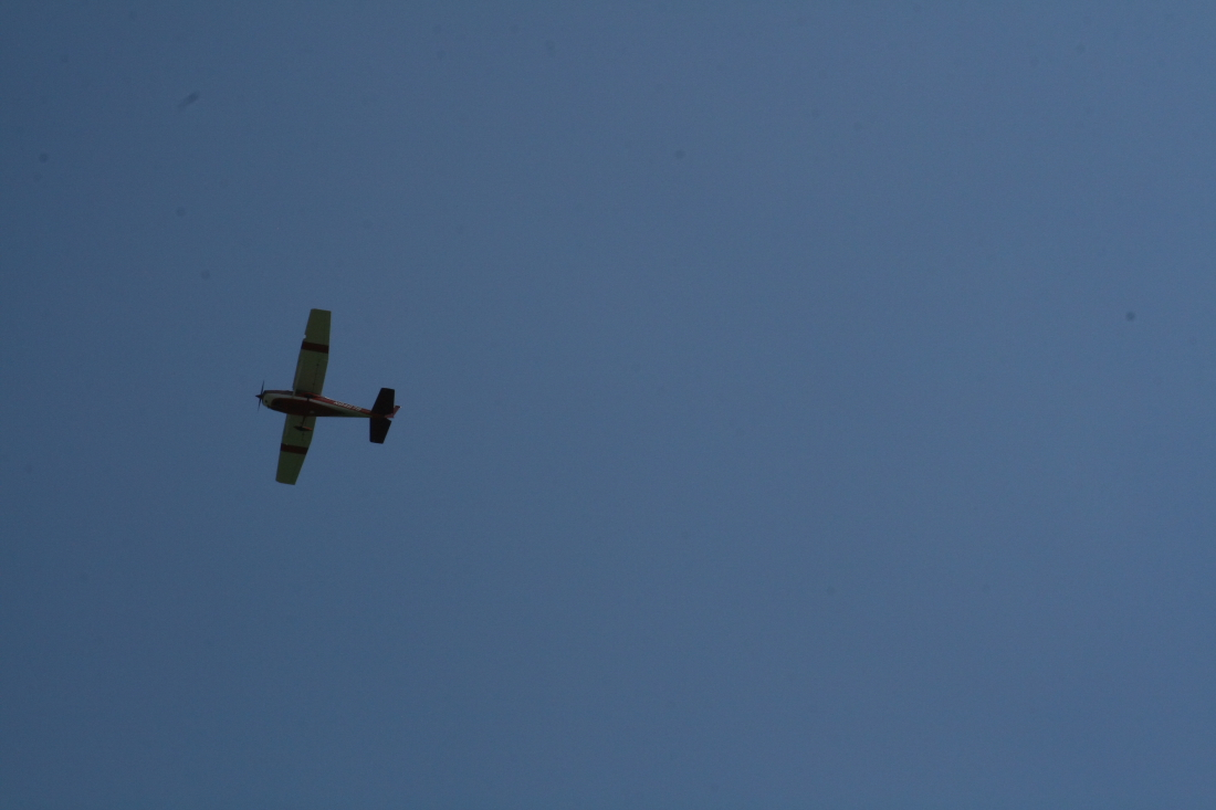float-fly-20090048