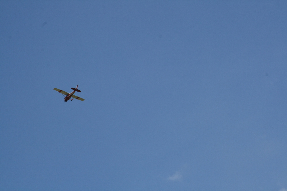 float-fly-20090050