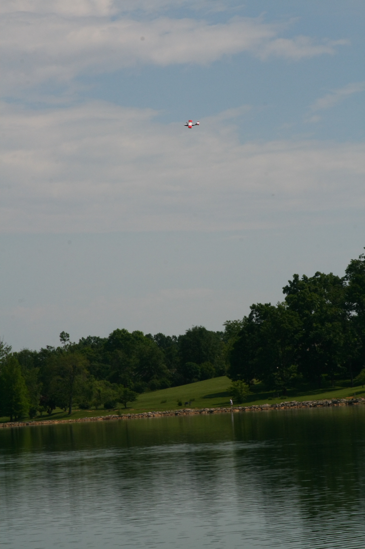 float-fly-20090066