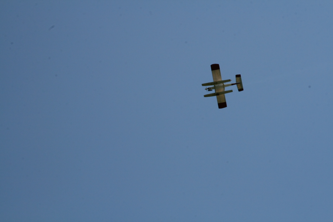 float-fly-20090077
