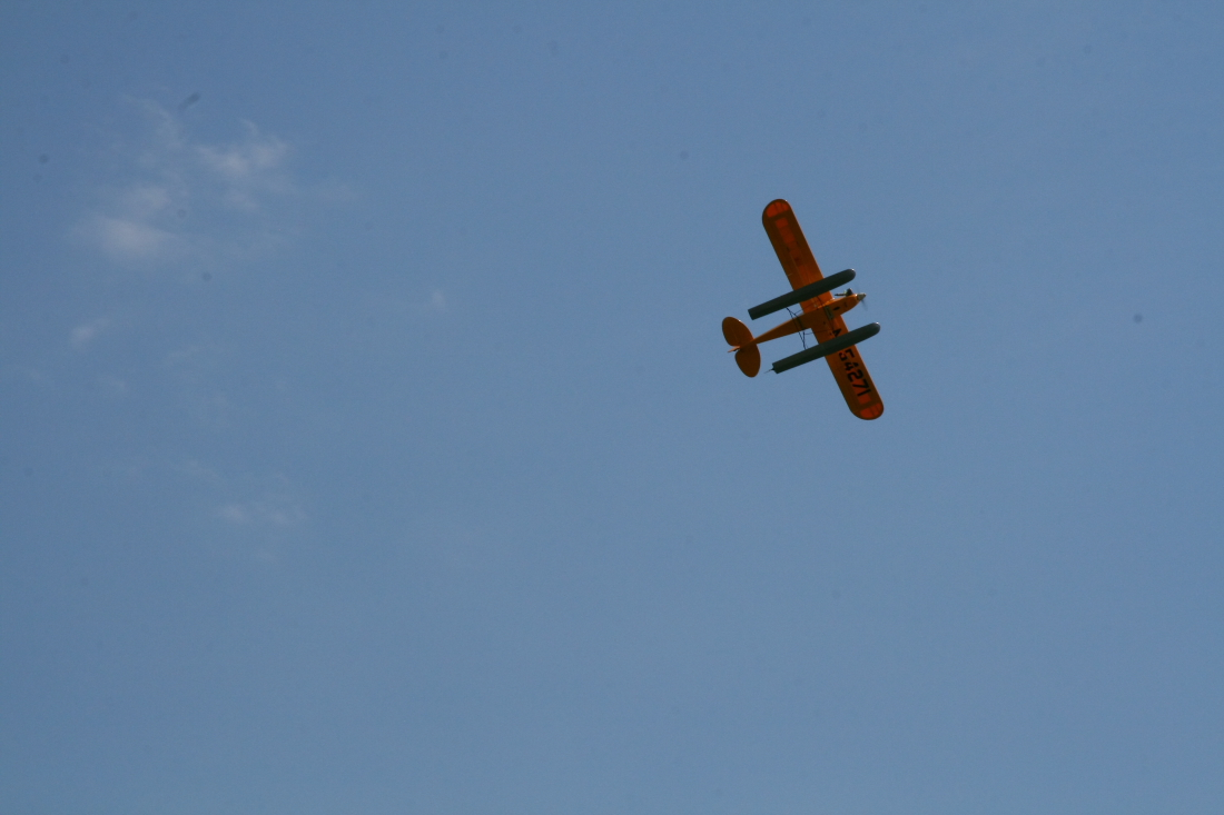 float-fly-20090094