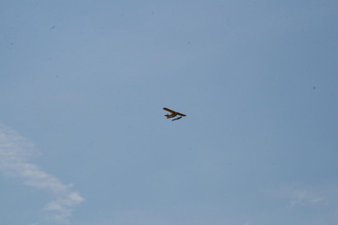 float-fly-20090097