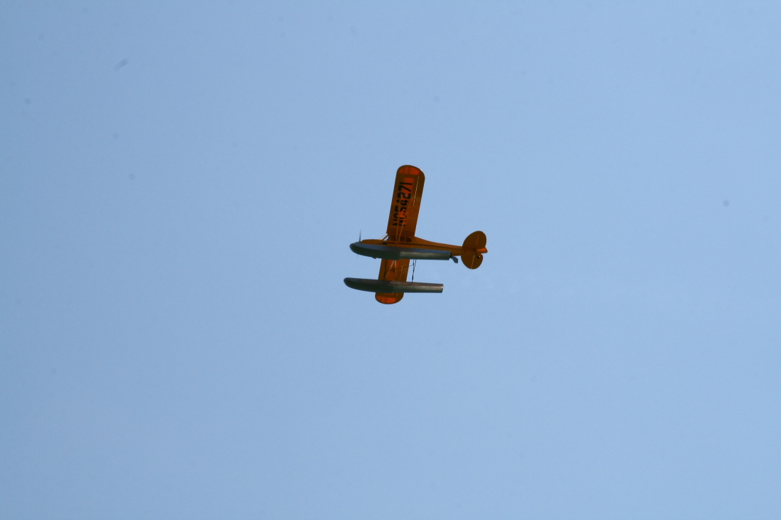 float-fly-20090099