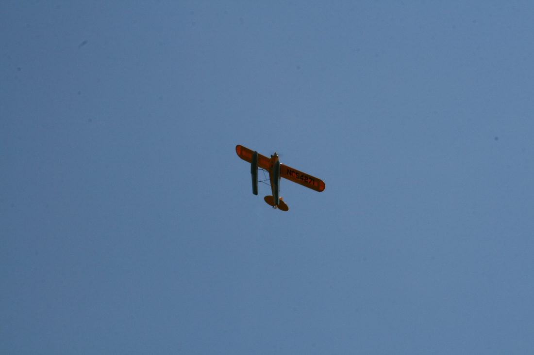 float-fly-20090101
