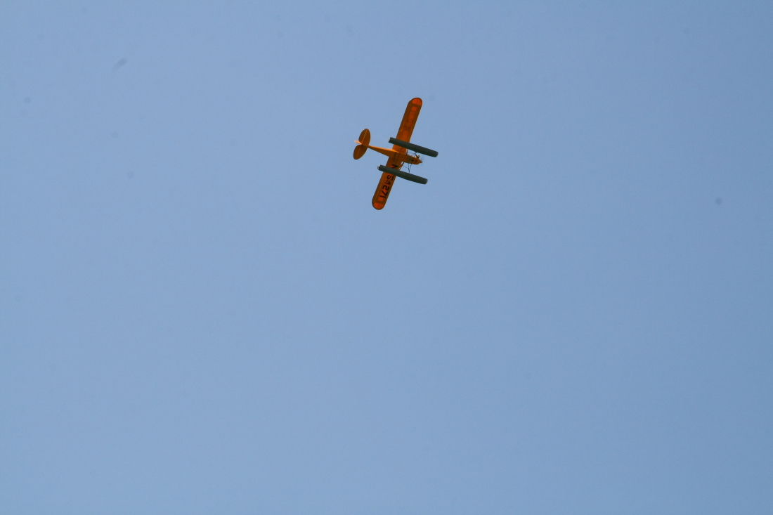 float-fly-20090104