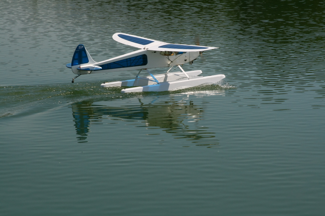float-fly-20090122