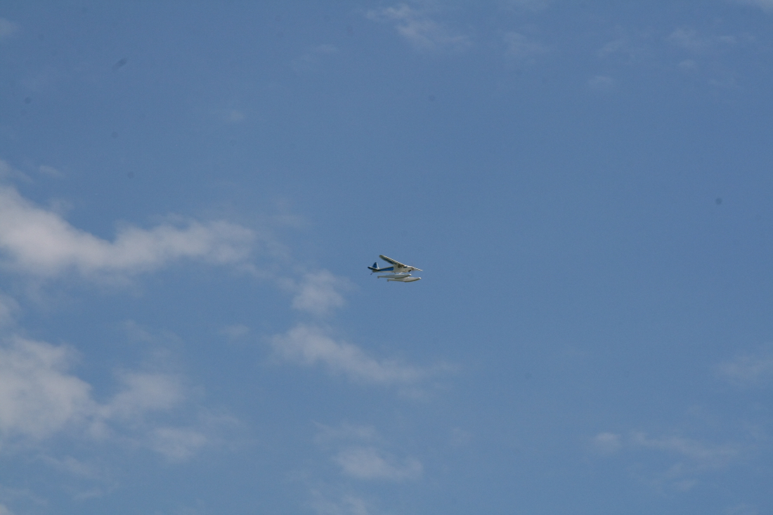 float-fly-20090128