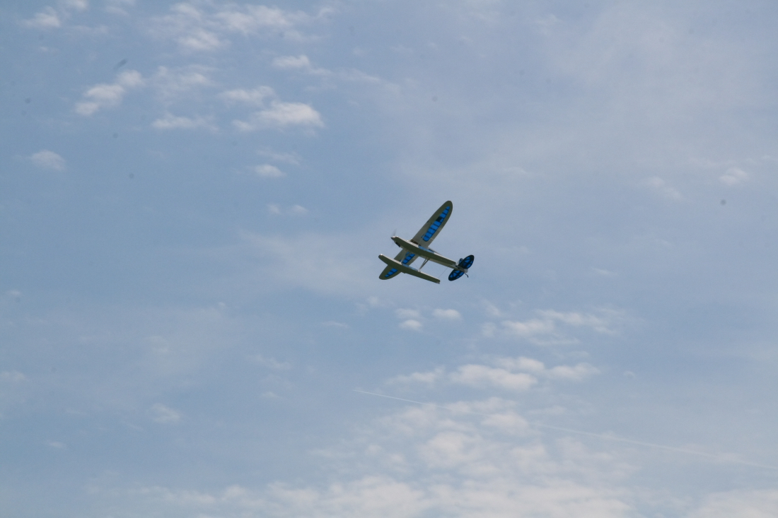 float-fly-20090133