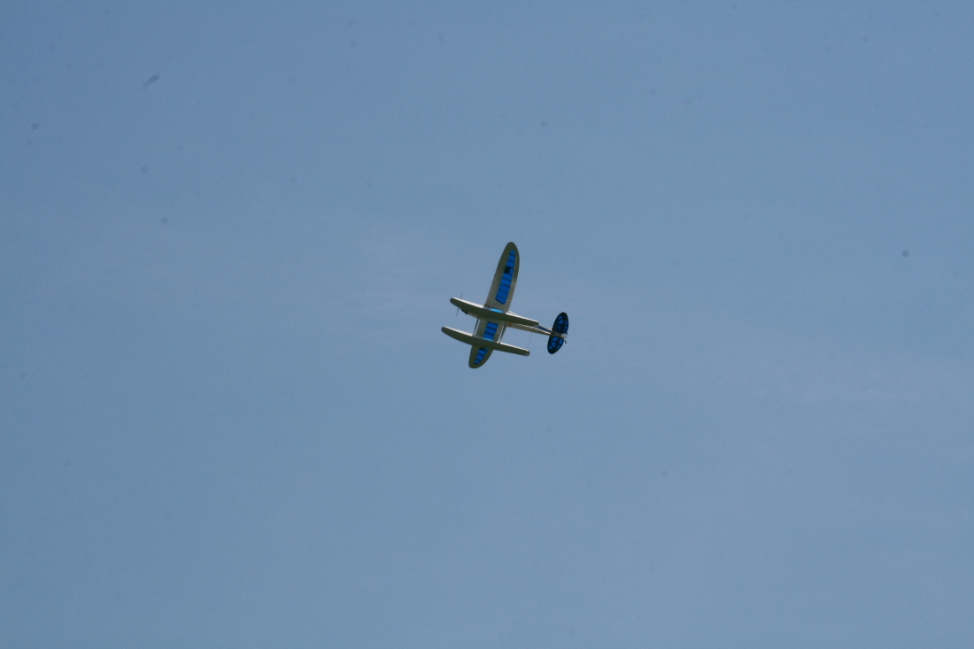 float-fly-20090134