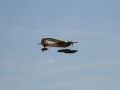 float-fly-20090021